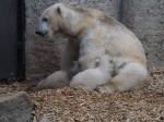 Giovanna und die Hellabummis (Tierpark Hellabrunn)