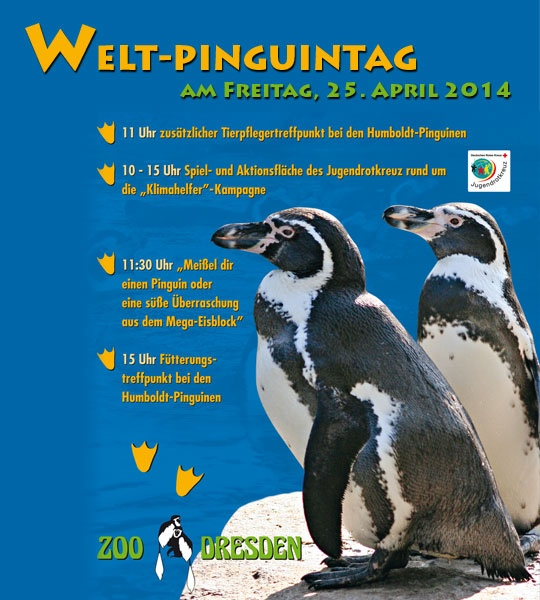 Pinguintag im Zoo Dresden