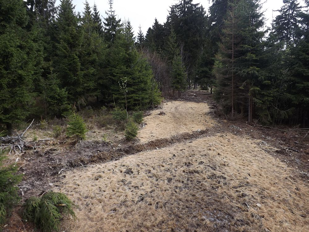 Rothirschgehege (Wildpark Mehlmeisel)