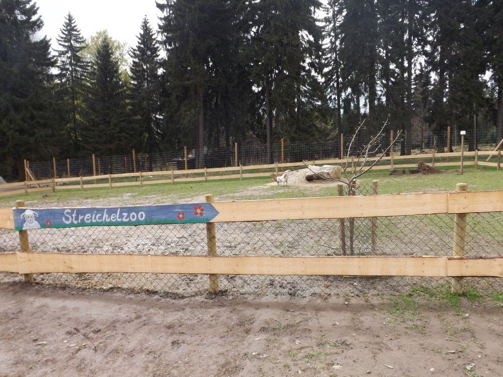 Streichelzoo (Wildpark Mehlmeisel)