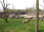 Anlage für Nashörner und Guerezas (Zoo Magdeburg)