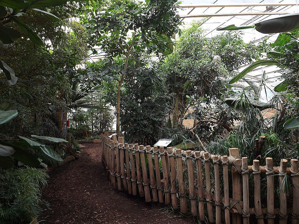 Nashornhaus (Zoo Magdeburg)