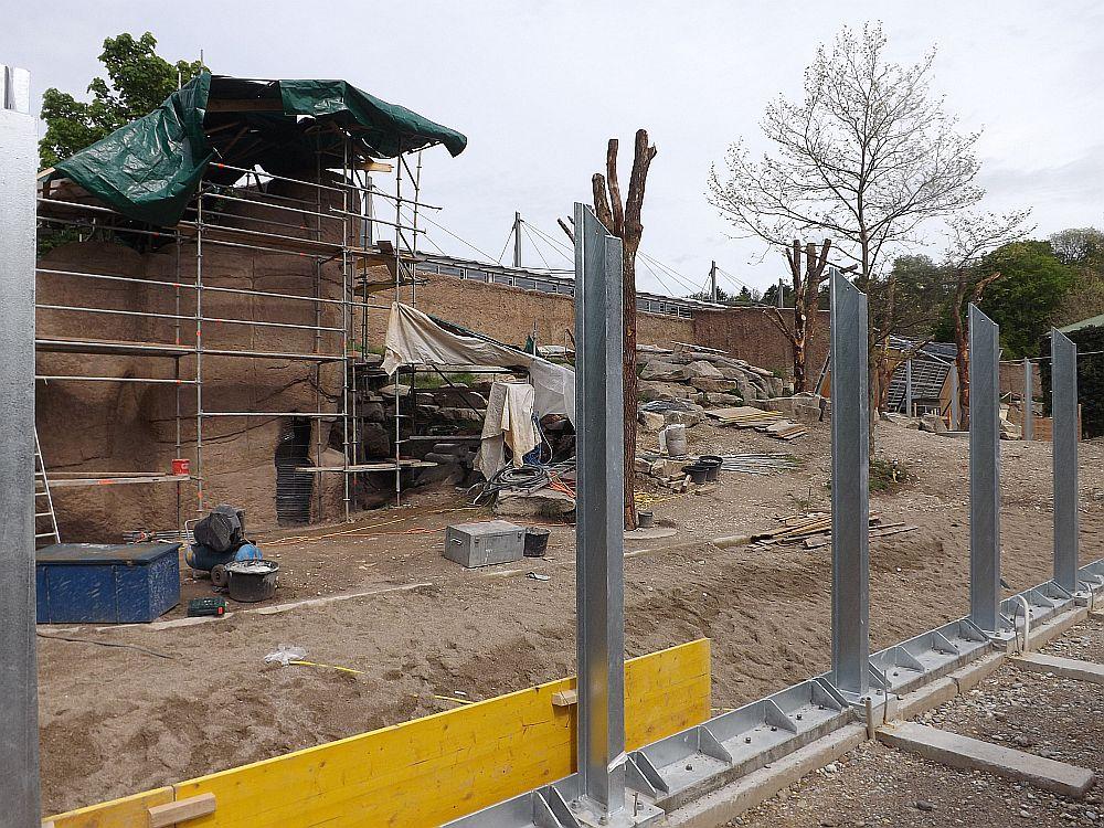 Baustelle Menschenaffenaußenanlage (Tierpark Hellabrunn)