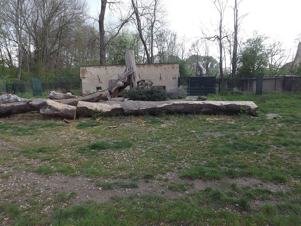 Braunbärenalage (Tiergarten Delitzsch)