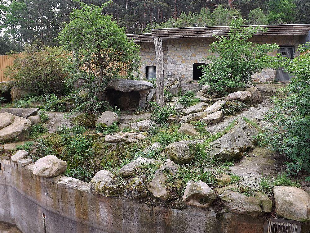 Braunbärenanlage (Tiergehege Westerhausen)