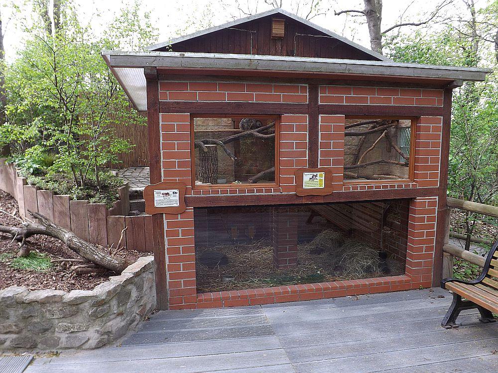 """""""Haus"""" für Hasenmäuse und Sumpfmeerschweinchen (Heimattiergarten Bierer Berg)"""