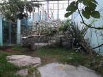Meerkatzen- und Klippschliefergehege (Tierpark Hellabrunn)