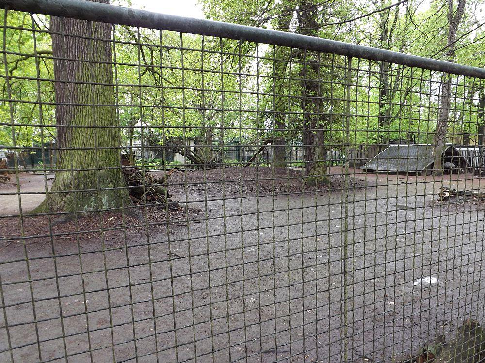 Nanduanlage (Tierpark Köthen)