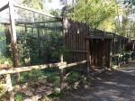 Ozelotanlage (Zoo Aschersleben)