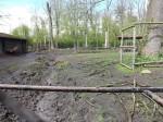 Rothirschanlage (Tierpark Köthen)