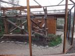 Baustelle: Servalanlage (Zoo der Minis)