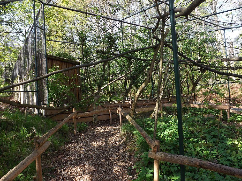 Begehbare Totenkopfanlage (Zoo Aschersleben)