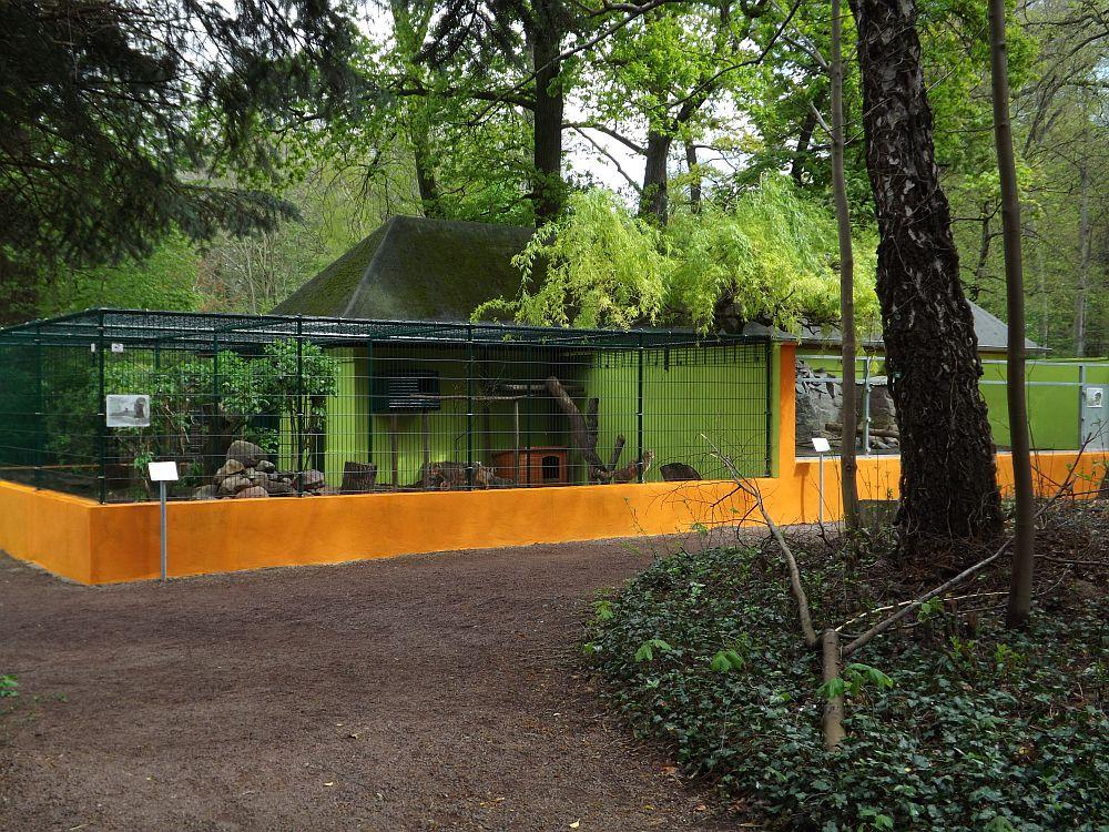 Anlage für Nutria und Wildkatzen (Tierpark Köthen)