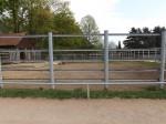 Wisentgehege (Tiergarten Hirschfeld)