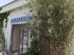 Aquarium (Tierpark Hellabrunn)