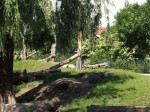 Bärenanlage (Zoo Hoyerswerda)