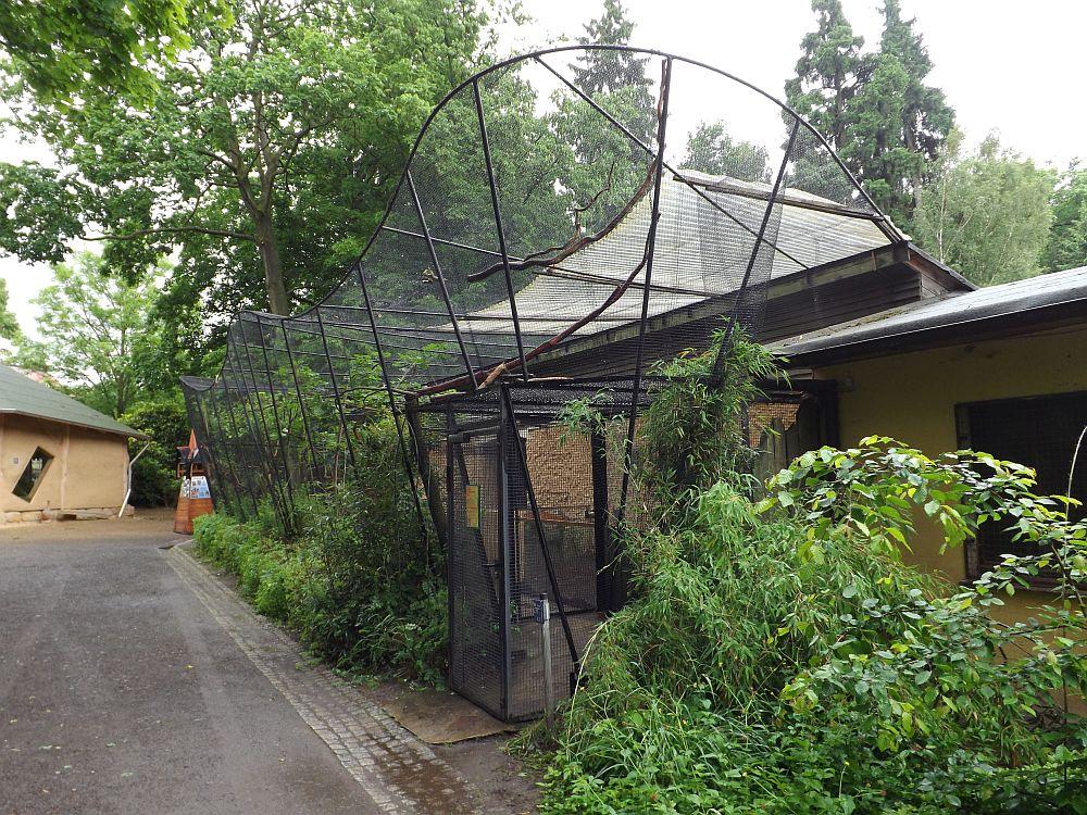 Begehbare Voliere (Tierpark Zittau)
