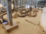 Erdmännchenanlage (Zoo Augsburg)