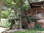 Ibisvoliere (Tiergarten Nürnberg)