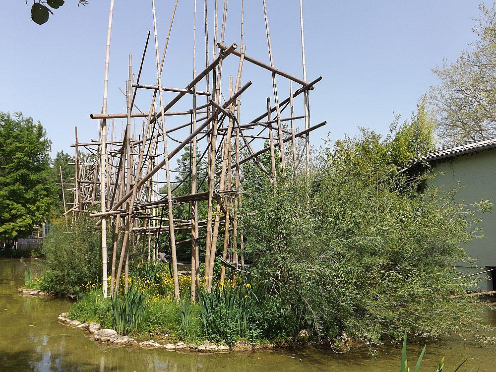 Gibbon- und Klammeraffenanlage (Tierpark Hellabrunn)