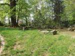 Marderhundanlage (Tierpark Hirschfeld)