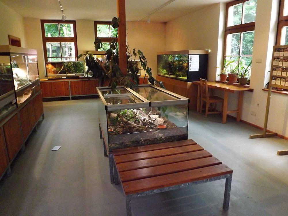 Naturkundehaus (Naturschutz-Tierpark Görlitz)