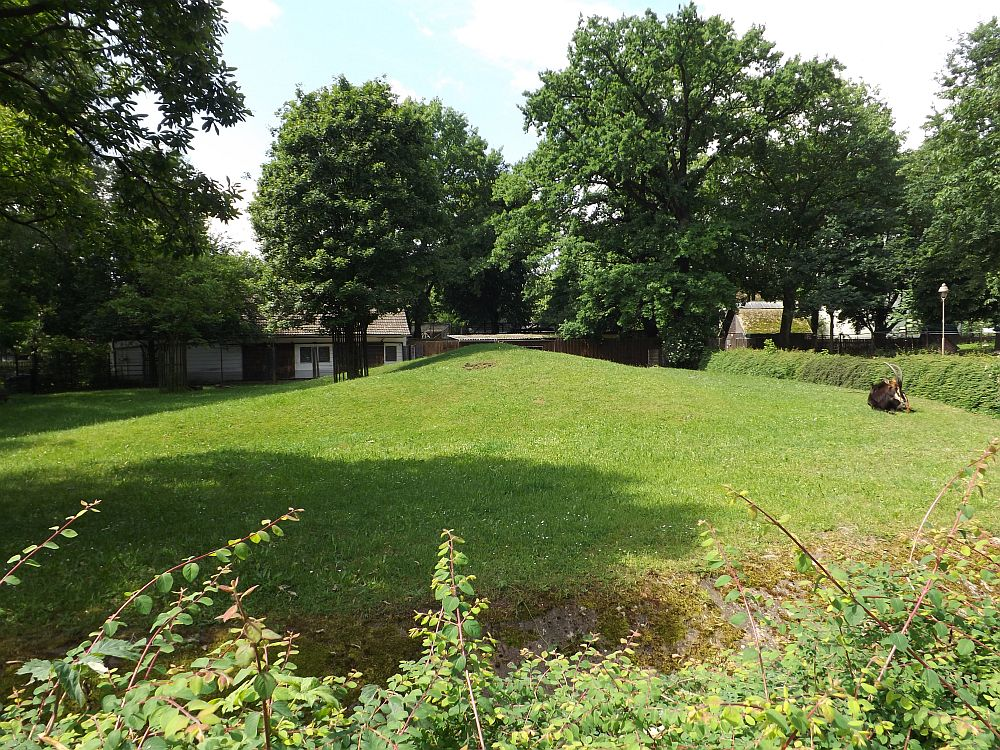 Rappenantilopenanlage (Zoo Hoyerswerda)