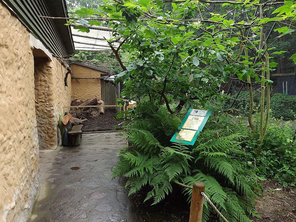 Südamerikavoliere (Tierpark Zittau)