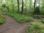 Wildpflanzengarten (Tierpark Hexentanzplatz)