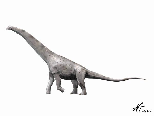 Alamosaurus sanjuanensis (© N. Tamura)