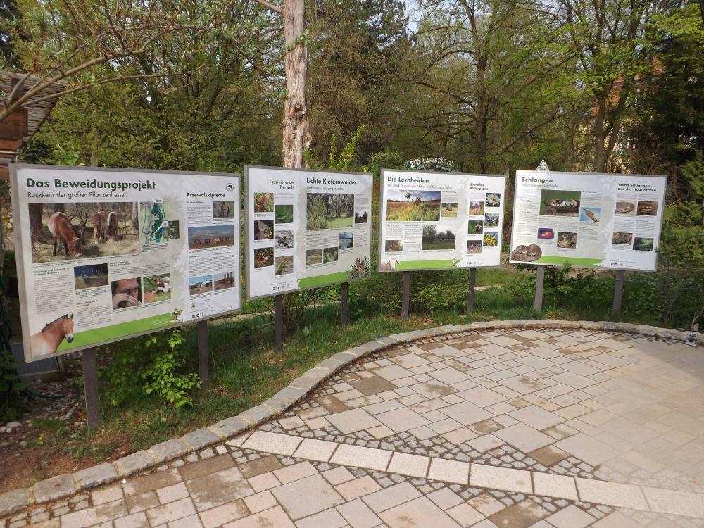 Artenschutzprojekte (Zoo Augsburg)