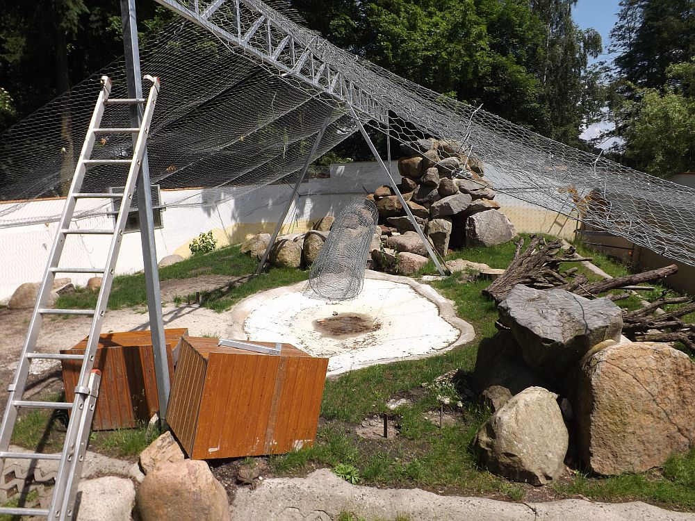 Baustelle Berberaffenanlage (Tierpark Senftenberg)