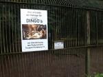 Baustelle Dingoanlage (Tierpark Perleberg)