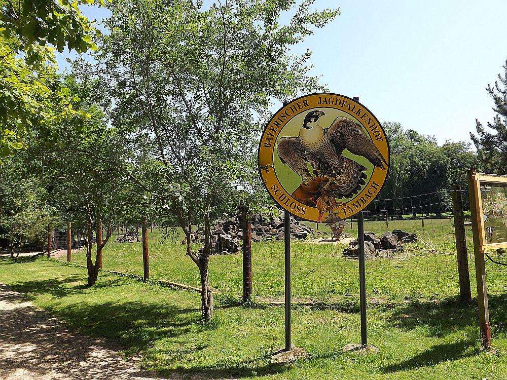 Jagdfalkenhof und Zwergziegenanlage (Wildpark Tambach)