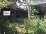 Klippschlieferanlage (Zoo Dresden)
