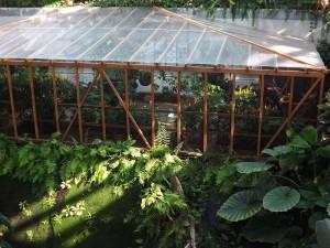 Schmetterlingshaus (Biosphäre Potsdam)