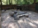 Stachelschweinanlage (Tierpark Cottbus)
