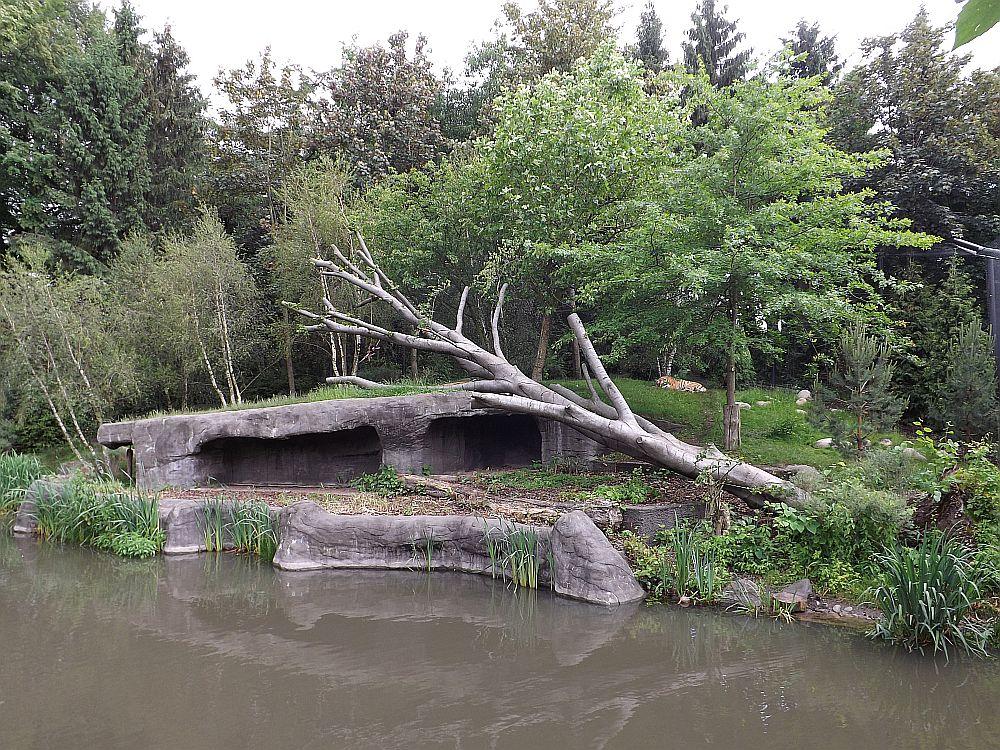 Tigeranlage (Tierpark Hagenbeck)