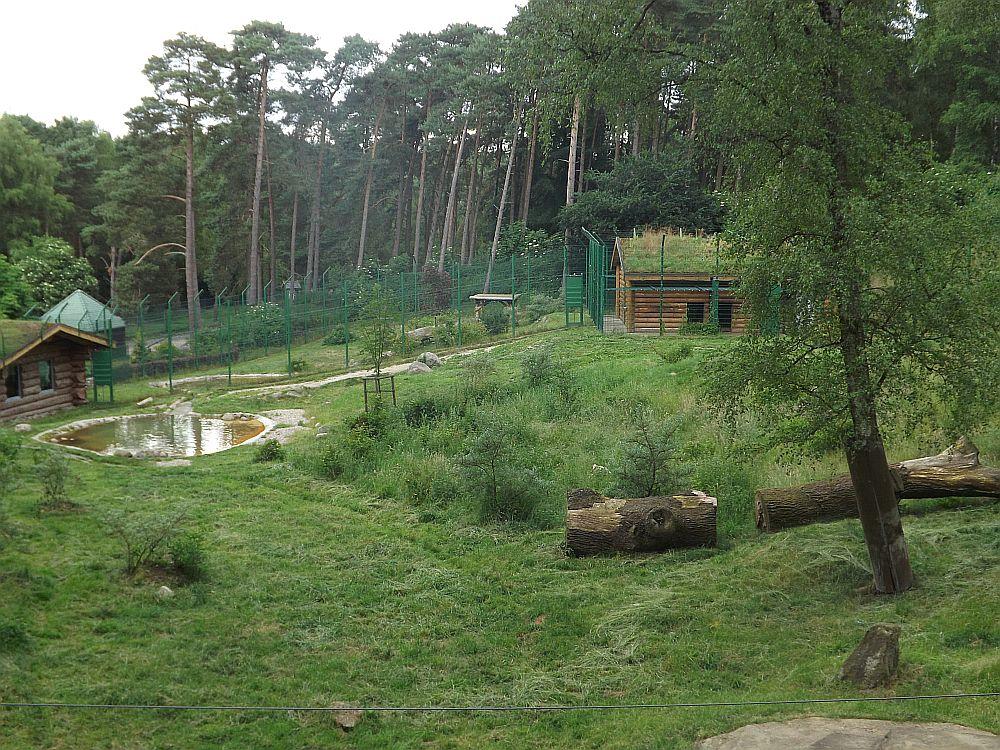 Tigeranlage (Wildpark Lüneburger Heide)