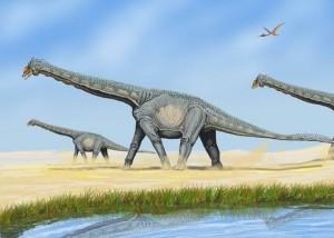 Alamosaurus (Dmitry Bogdanov)