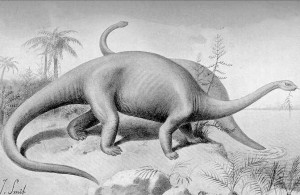 Apatosaurus (Joseph Smit)