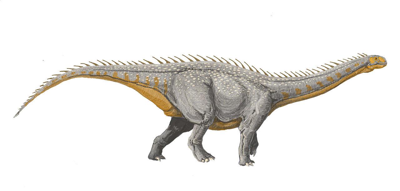 Barapasaurus tagorei (Dmitry Bogdanov)
