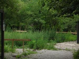 Baustelle (Vogelpark Olching)