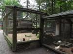 Hühnervoliere (Wildpark An den Eichen)