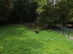 Storchanlage (Wildpark An den Eichen)