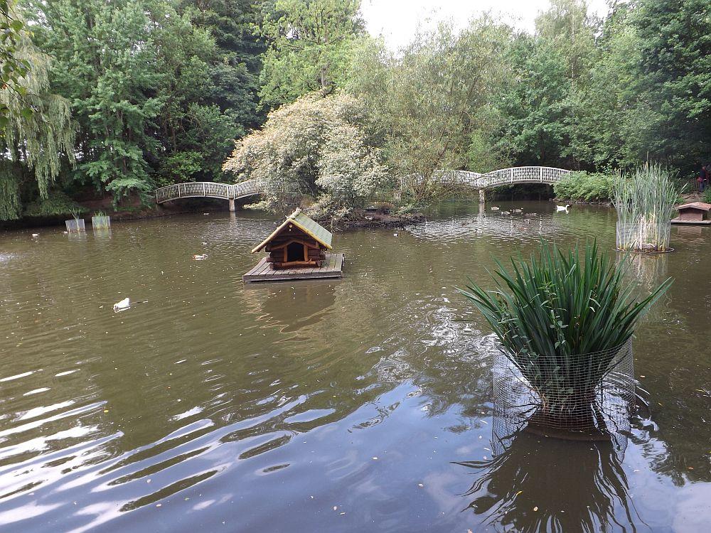 Teich (Wildpark Lüneburger Heide)