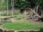 Bärenanlage (Tierpark Hagenbeck)