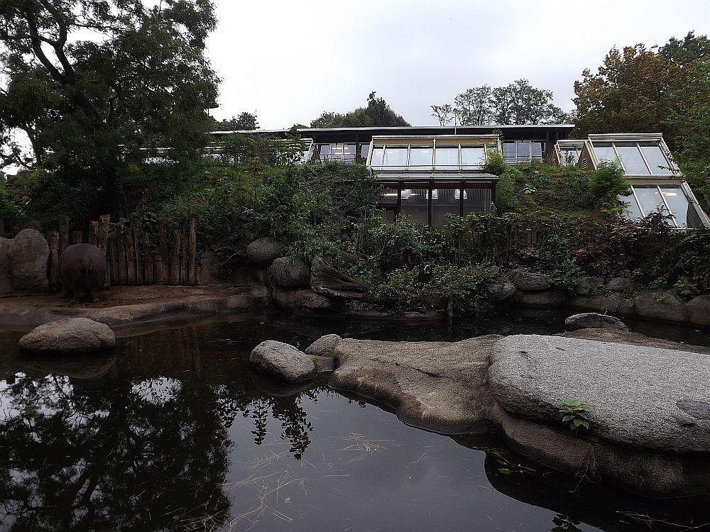 Dickhäuterhaus (Zoo Karlsruhe)
