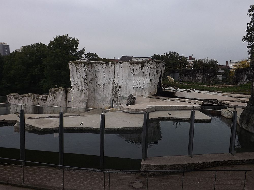 Eisbärenanlage (Zoo Karlsruhe)
