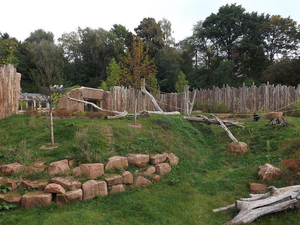Außenanlage der Gorillas (Zoo Saarbrücken)